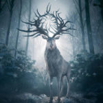 Shadow and Bone First Look Images Released Ahead Premiere Date